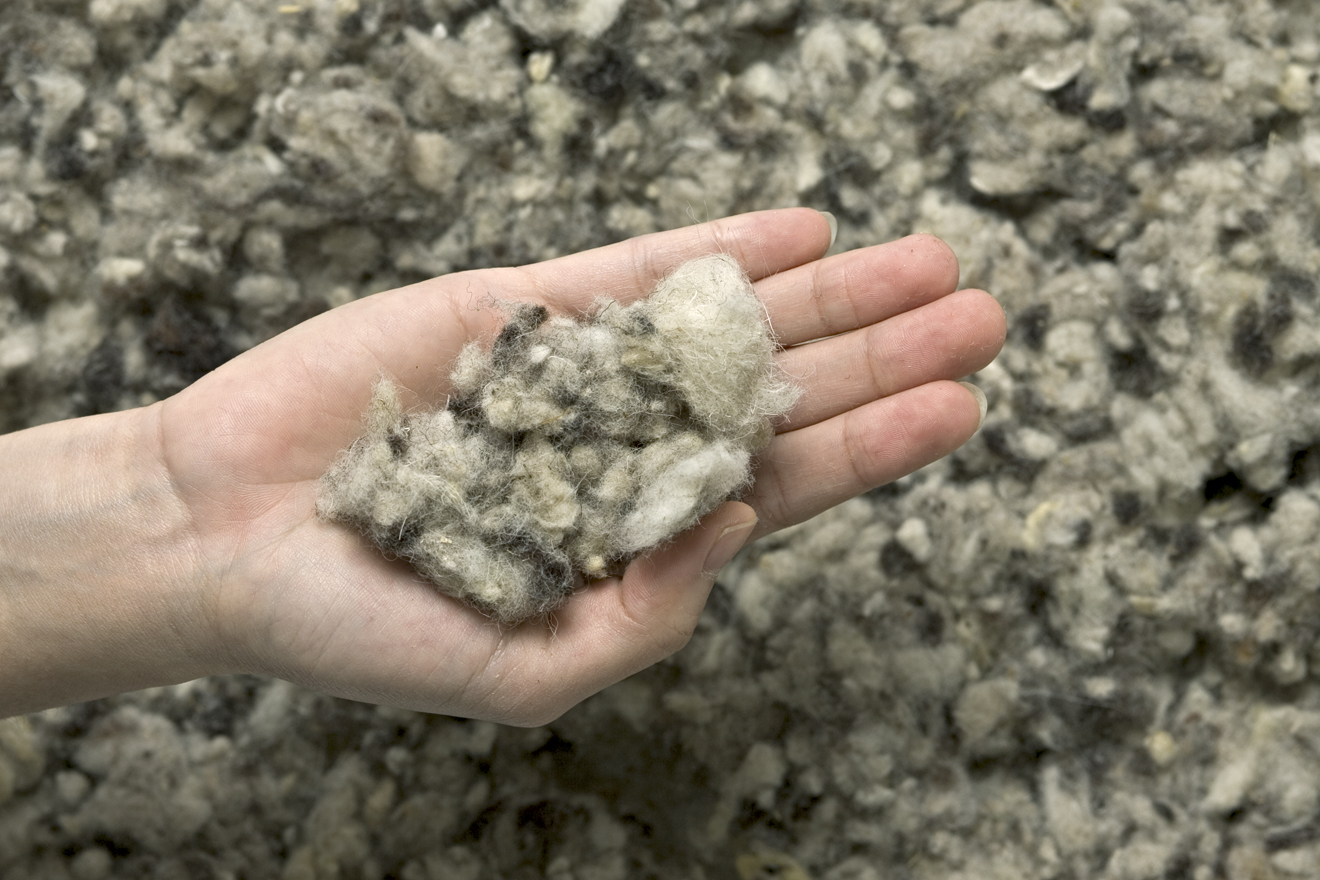 Women's hand holding Wool Insulation